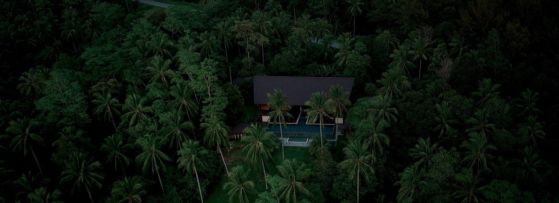 Hibiscus Villa Borneo